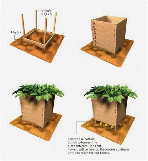 how to build a vegetable box woodworking projects plans
