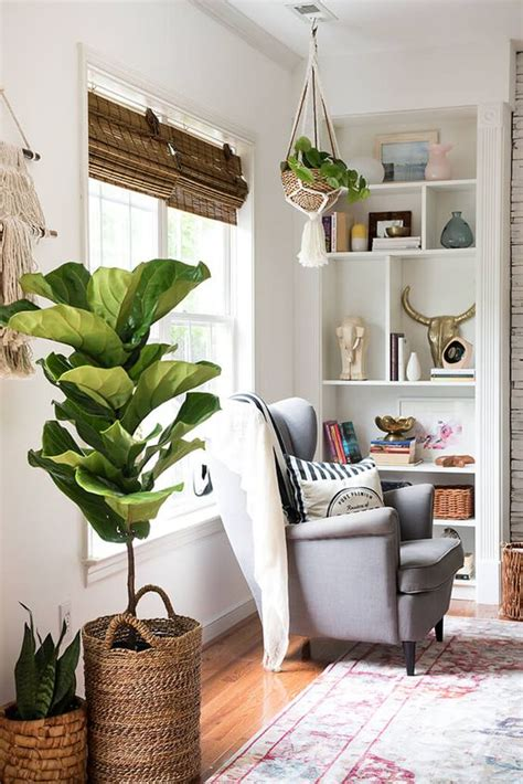 Home Decor Plants Living Room 26 cool ways to use baskets at home decor shelterness