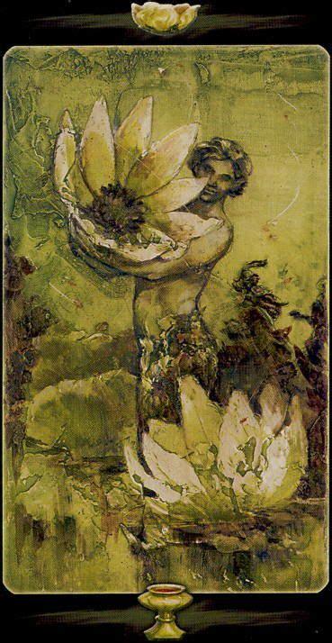 1000 ideas about lotus tarot on rider waite
