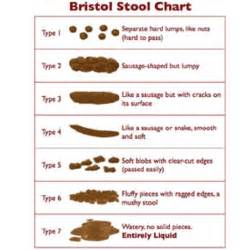 bristol stool chart freshener novelty by pedrows
