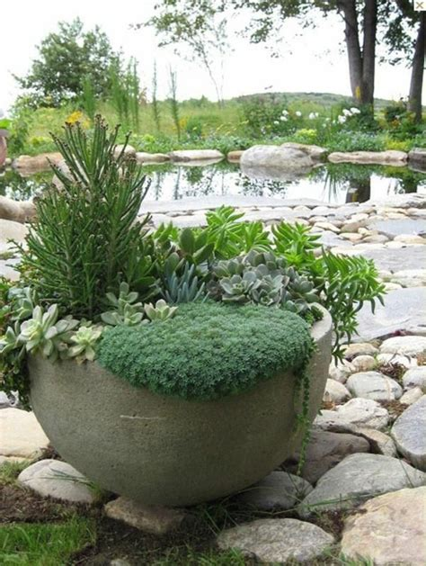 potted plants for a beautiful garden containers fit select hum ideas