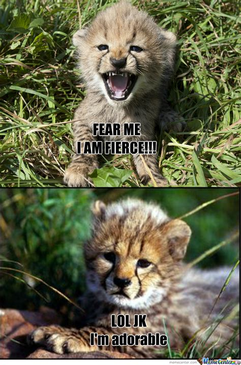 The Fear In Me fear me by ladymordsith meme center