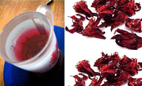 Teh Rosella all tea benefits of roselle