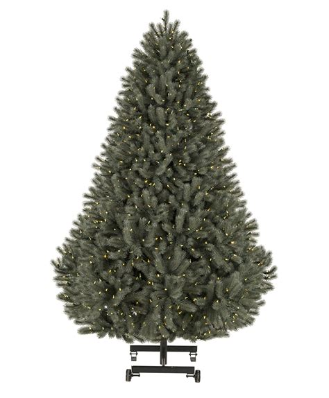 colorado blue spruce snap tree tree classics