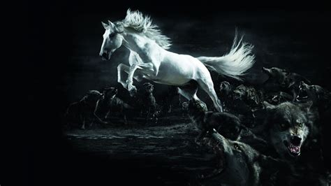 black and white anime wolves 3 background wallpaper white horse wolf wallpapers hd wallpaper 3d abstract