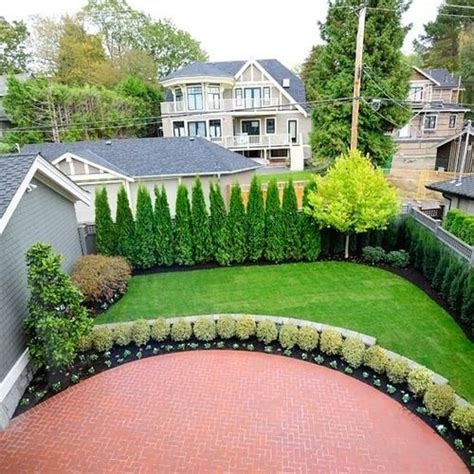 backyard privacy trees privacy landscaping ideas ideas pictures remodel and
