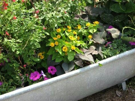 1000 images about bathtub planters on