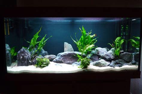 jbl aquarium beleuchtung aquarienbilder barschkeller bielefeld