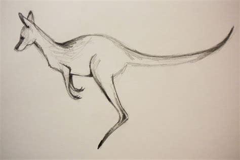 doodlebug kanguru pointsies kangaroo doodle