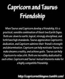 1000 images about capricorn taurus on