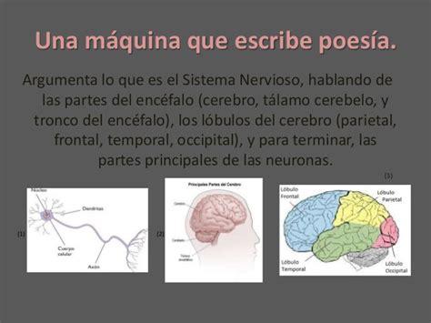 libro neurociencia para julia neurociencia para julia lorena