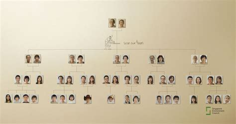 what your family tree can tell you about your health health
