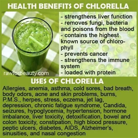 Detox Symptoms Chlorella by 47 Best Images About Wheatgrass Chlorella On