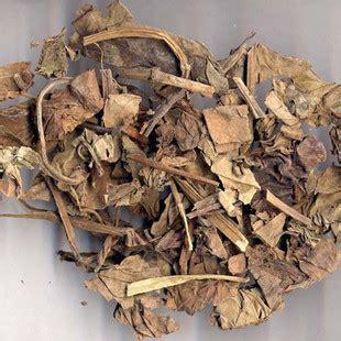 Yu Xing Cao Ekstrak Heartleaf Houttuynia Herb Herba Houttuyniae heartleaf houttuynia herb tcm herbs tcm wiki