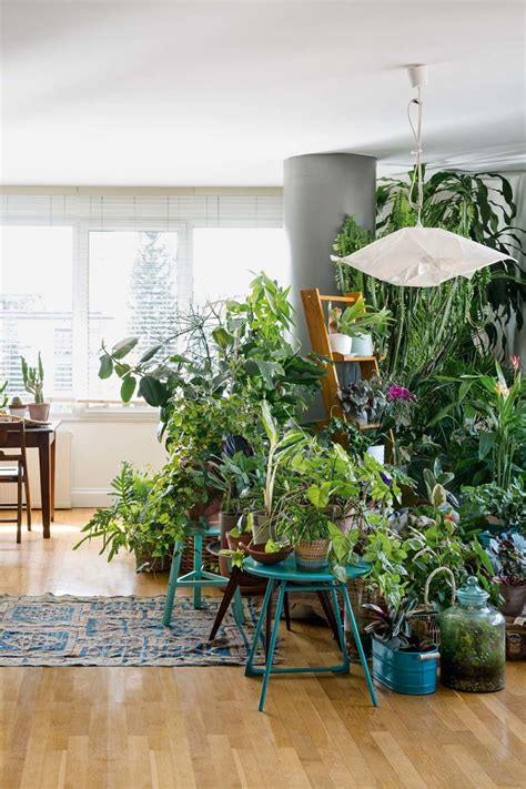 Home Interior Design Living Room by Urban Jungle Interior Living And Decorating With Plants