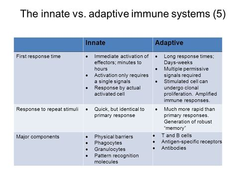 pattern recognition receptors and control of adaptive immunity lecture 1 review ppt video online download