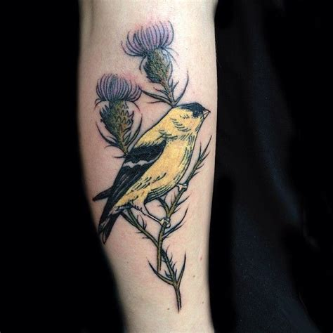 watercolor tattoos nashville golden finch by artist evan davis at banshee