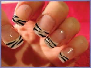 zebra nails design nail designs picture