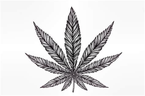 marijuana tattoos allweednews