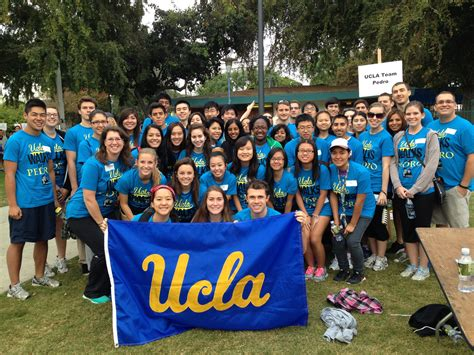 Compare Mba Programs Ucla Center For Memes by Ucla Cus Www Imgkid The Image Kid Has It
