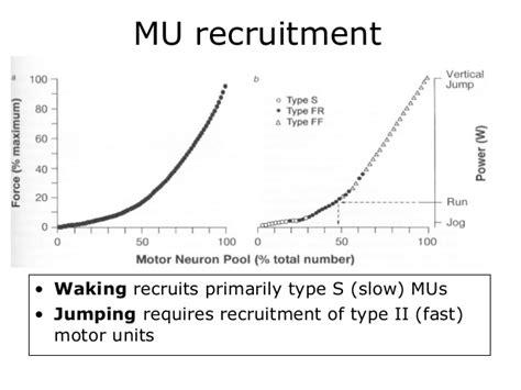 pattern of motor unit recruitment motor unit recruitment patterns impremedia net