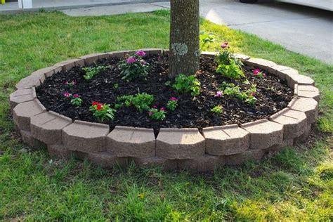 Landscaping Ideas Around Trees Landscaping Around Trees Gardening Pinterest