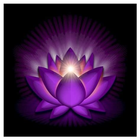 crown lotus violet quot crown quot chakra lotus wall poster
