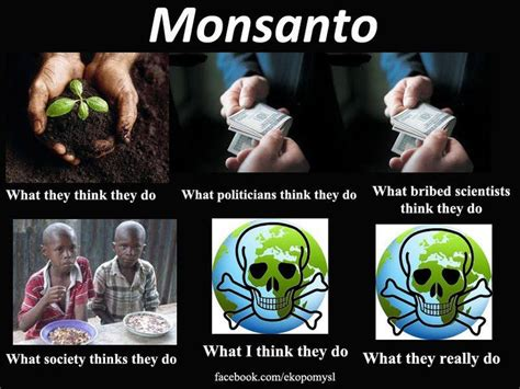 Monsanto Meme - monsanto meme labelgmos farm to table say no to gmos