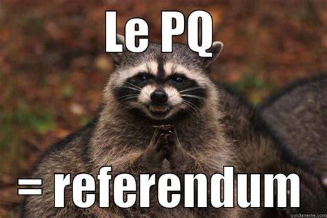 Racoon Meme - evil plotting raccoon memes