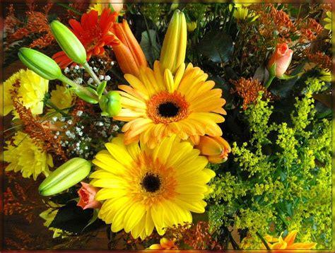 imagenes flores grandes imagenes grandes de flores imagui