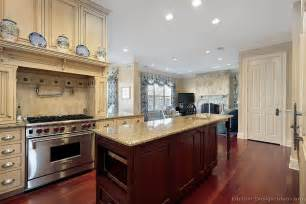 Two Tone Kitchen Cabinet Ideas by Pictures Of Kitchens Traditional Two Tone Kitchen