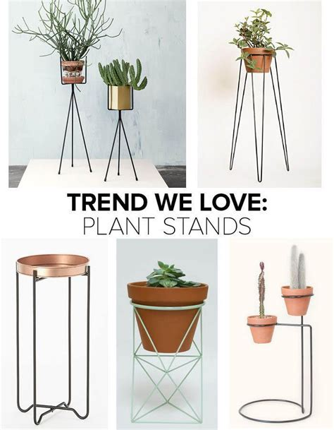 Pedestal Planters For Indoor by 25 Best Ideas About Indoor Plant Stands On