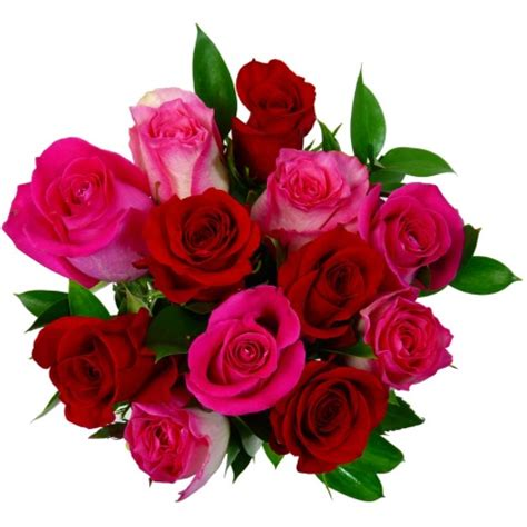 Valentines Day Roses by Roses Free Delivery Post A Valentines