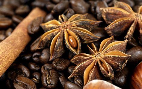 coffee plant wallpaper кофе 2 50 обоев 187 смотри красивые обои wallpapers