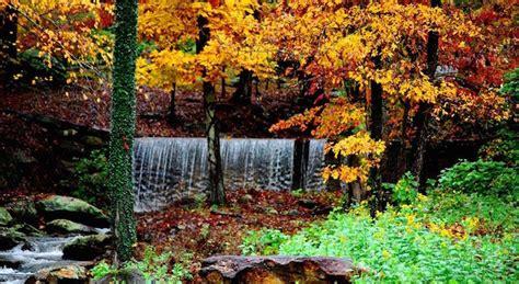 fall color report 2017 fall foliage report fall events lake lure fall