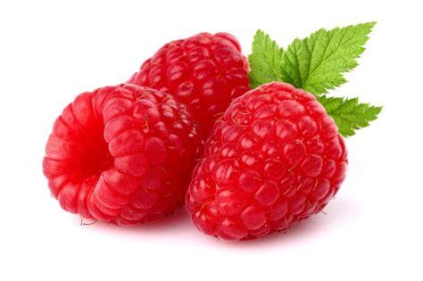 raspberries infowiki com