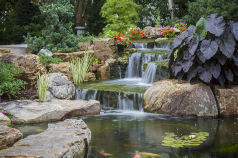 the healing power of water features