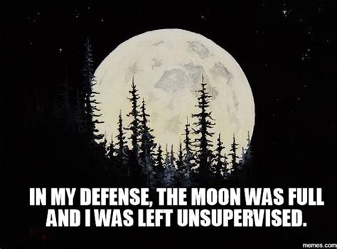 Full Moon Meme - pinterest the world s catalog of ideas