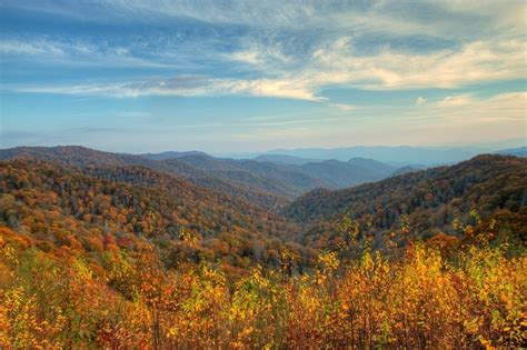 tennessee colors your ultimate guide to the smoky mountains fall colors