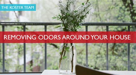 removing odors around your house grand lake realtor