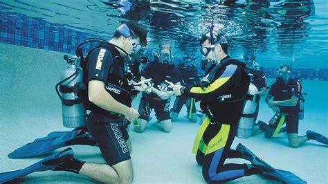 dive instructor divemaster and diving instructor description