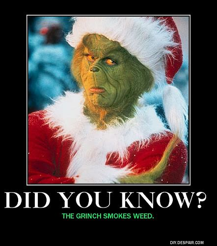 Funny Grinch Memes - did you know grinch meme dylan gray flickr
