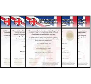 62 certificate template not listed resume summary examples for certificate template missing from certificate template to yelopaper Gallery