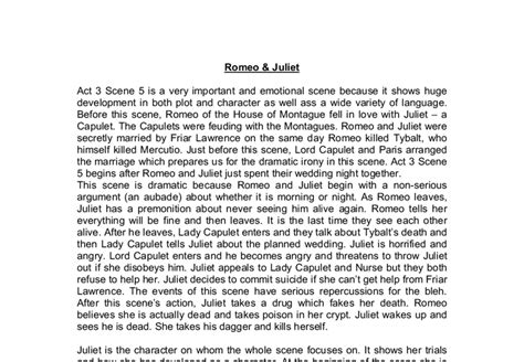 5 Paragraph Essay On Romeo And Juliet by Essay Thesis For Romeo And Juliet Can I Write My Dissertation On An Help
