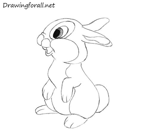 let s draw bunnies 35 step by step bunny drawings books how to draw a rabbit for drawingforall net