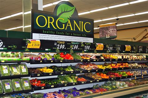 healthy growth in global organic food sector organic