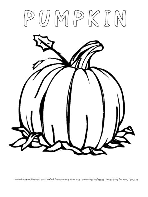 thanksgiving pumpkin coloring pages free pumpkin coloring pages coloring pages gallery