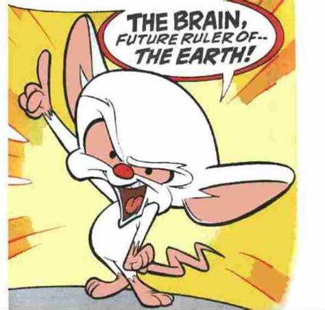 Pinky And The Brain Meme - pinky and the brain meme