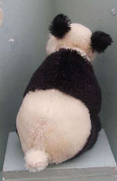 bigbotom  panda  wee scone bear pile