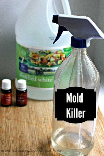 Mold Detox Takes 6 Months by Diy Mold Remover Spray Http Homestead And Survival